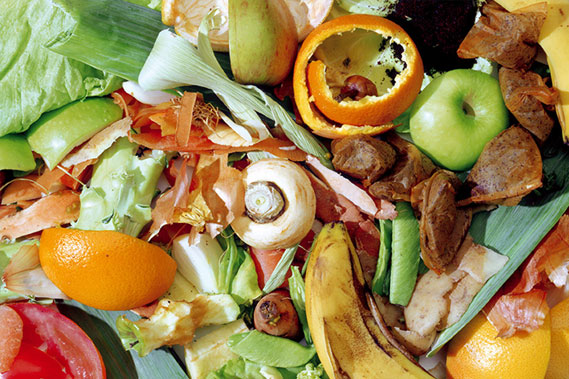 Re-use of vegetables, fruit and garden waste